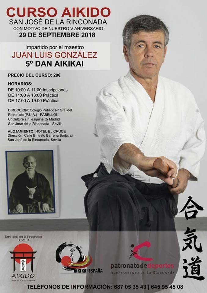 Curso donde practicar Aikido en Sevilla